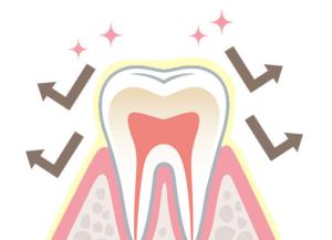 歯石の沈着を防いでいるイメージ画像